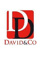 David & Co