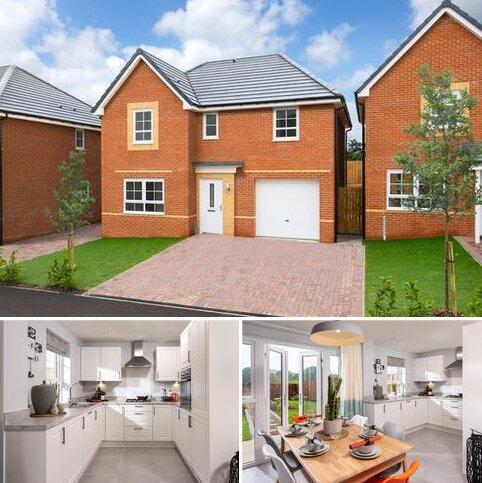 4 bedroom detached house for sale - Plot 381, Ripon at Cherry Tree Park, St Benedicts Way, Ryhope, SUNDERLAND SR2