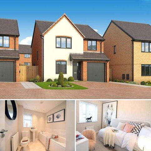 4 bedroom house for sale - Plot 312, The Pine at Roman Fields, Peterborough, Manor Drive PE4