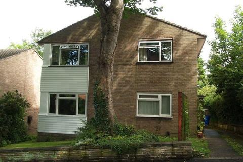 2 bedroom ground floor flat to rent - Adelaide Road, Sheffield
