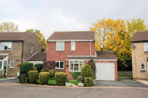 3 bedroom detached house for sale - Stonehaven Way, Darlington