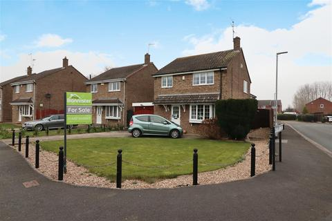 3 bedroom detached house for sale - Meadow Lane, Newport, Brough