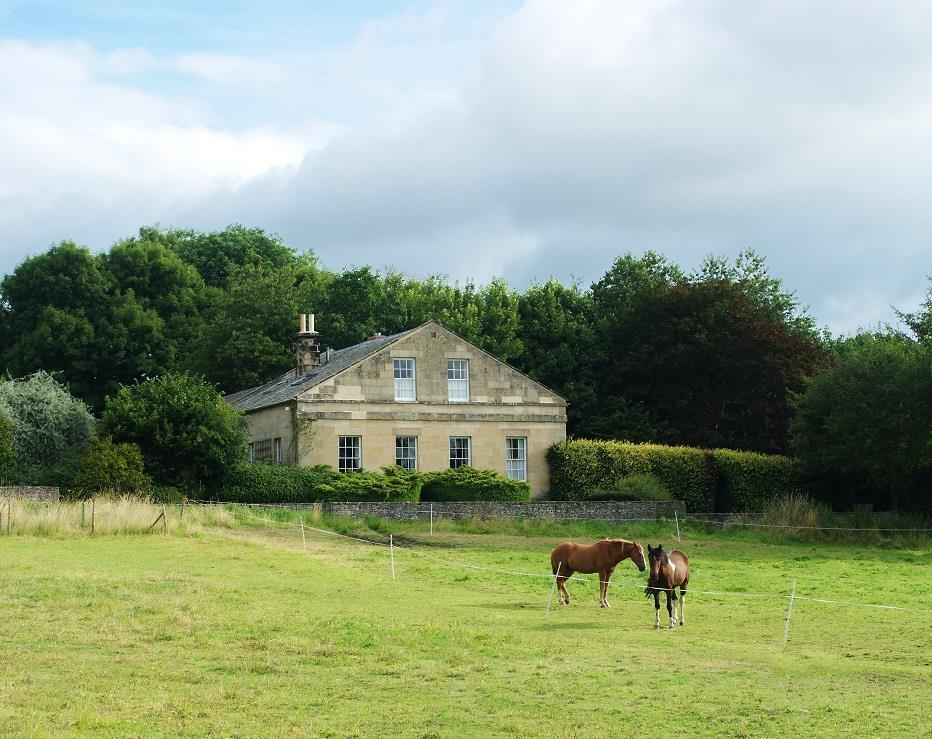 Knipes Hall from paddock (summer)