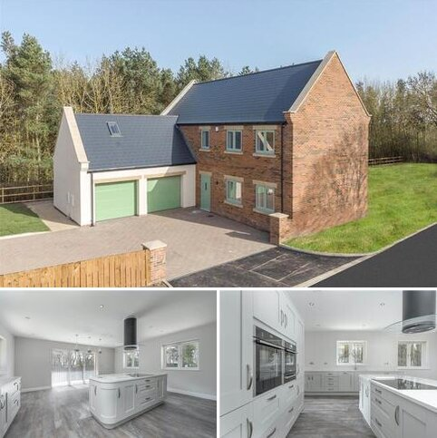 4 bedroom detached house for sale - Oystercatcher, Whitefield Farm, Morpeth, NE61