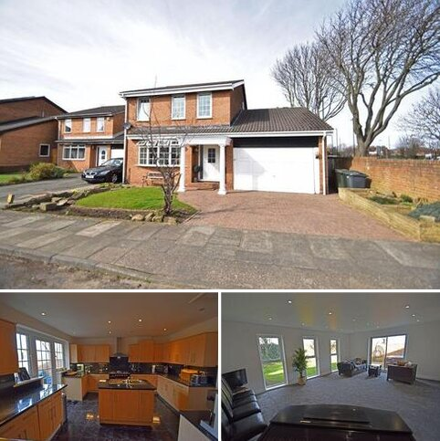 4 bedroom detached house for sale - Kelvin Grove, North Shields