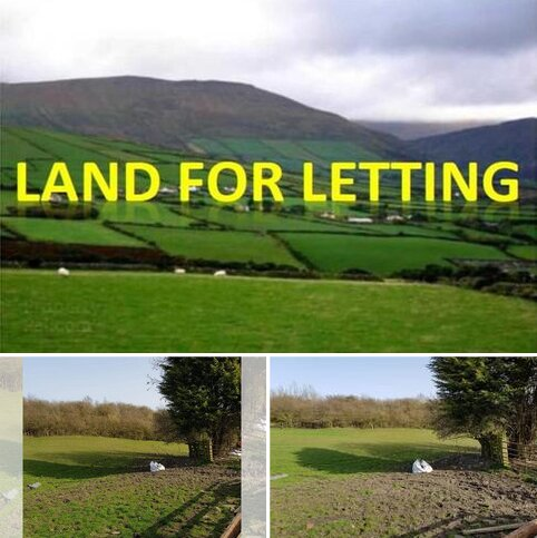 Equestrian property to rent - 1 Land Shotton