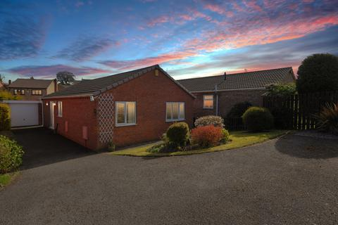 3 bedroom detached bungalow for sale - Trevose Close, Chesterfield