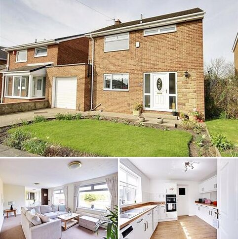 3 bedroom detached house to rent - Paddock Close, Cleadon Village, Tyne And Wear