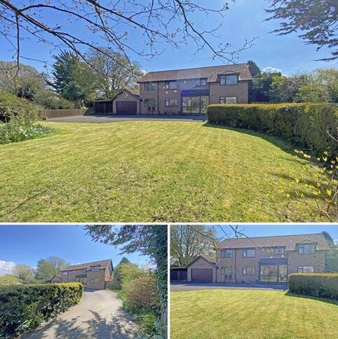 4 bedroom detached house for sale - Tower Hill, Taunton