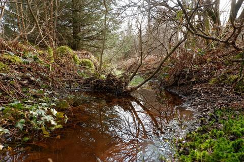 Woodland for sale - WOODLAND: Coed Rhostir, Bronant, Aberystwyth SY23 4JE