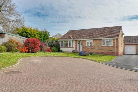 3 bedroom detached bungalow for sale - Higher Elmwood, Roundswell