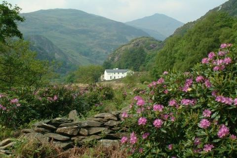 16 bedroom house for sale - Beddgelert, Beddgelert, Gwynedd, LL55