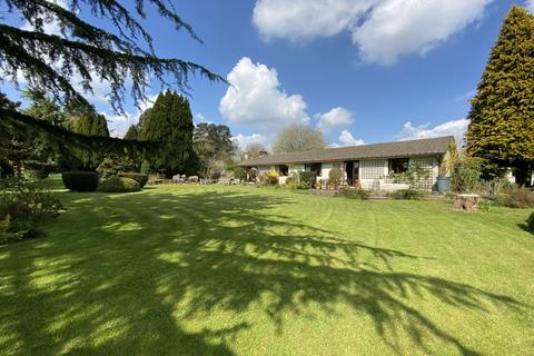 3 bedroom detached bungalow for sale - Nantyderry, Abergavenny, NP7