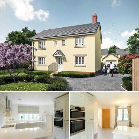 4 bedroom detached house for sale - The Maples, Curry Rivel, Langport, TA10