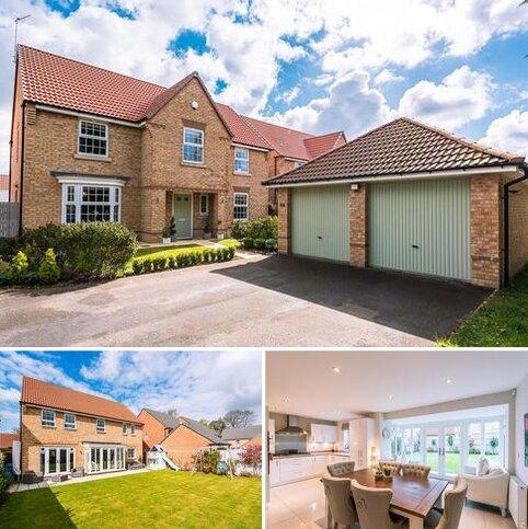 4 bedroom detached house for sale - Lyus Grove, Stamford Bridge, York, YO41