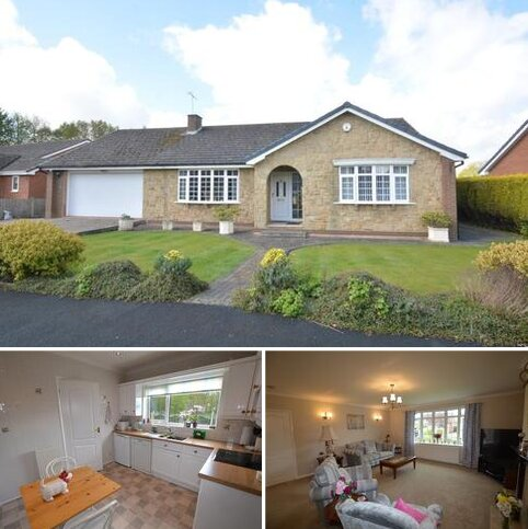 3 bedroom detached bungalow for sale - Holray Park, Carlton