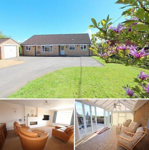 3 bedroom detached bungalow for sale - Manston Road, Sturminster Newton, Dorset. DT10 1AG