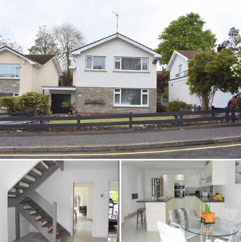 4 bedroom detached house for sale - Rhyd Yr Helyg, Sketty, Swansea