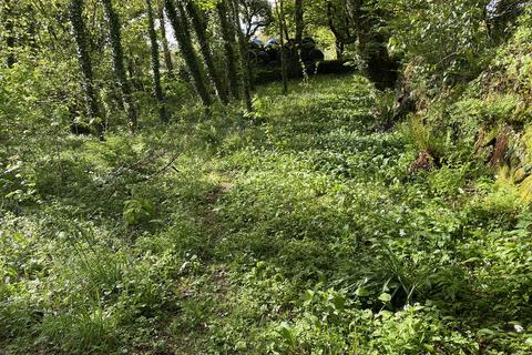 Land for sale - The Grove, Cilgwyn Road, Newport