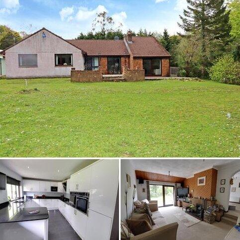 4 bedroom detached bungalow for sale - Millpool Hill, Millpool