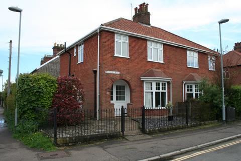 3 bedroom semi-detached house for sale - Waldeck Road, Norwich NR4
