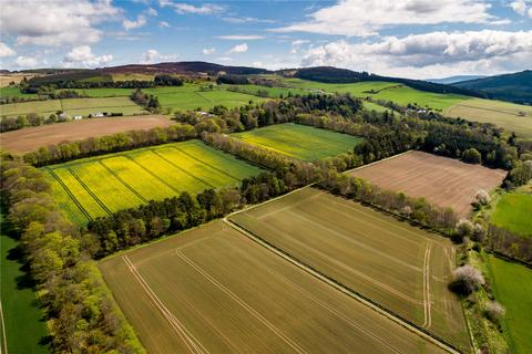 Land for sale - Land at Whitehouse, Alford, Aberdeenshire, AB33