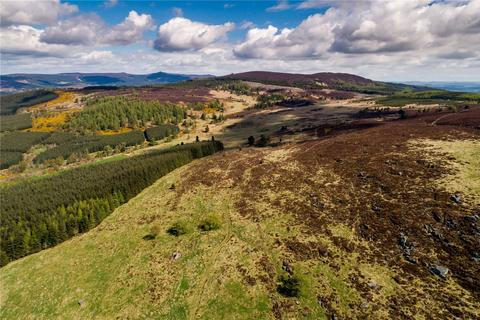 Land for sale - Lot 4 Land At Whitehouse, Alford, Aberdeenshire, AB33