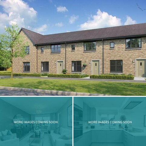3 bedroom terraced house for sale - Plot 123, Berwick at Hunter's Meadow, Hunter's Meadow, 2 Tipperwhy Road PH3