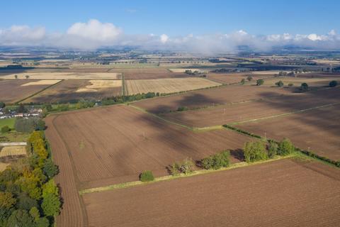 Farm for sale - Brigton Arable Field - Lot 2, Douglastown, Forfar, Angus