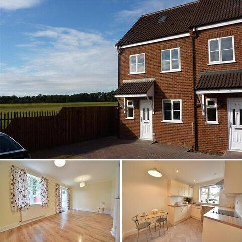 4 bedroom end of terrace house for sale - Bracken Road, Thetford, IP24