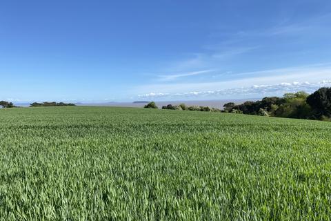 Farm land to rent - Two Lots of Arable Land, Near Cosmeston, Penarth