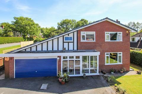 4 bedroom detached house for sale - Cefn Morfa, Llandrindod Wells, LD1