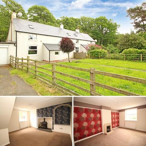 2 bedroom semi-detached house to rent - Colwell, Hexham