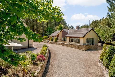 3 bedroom detached house for sale - Scremerston, Berwick-upon-Tweed