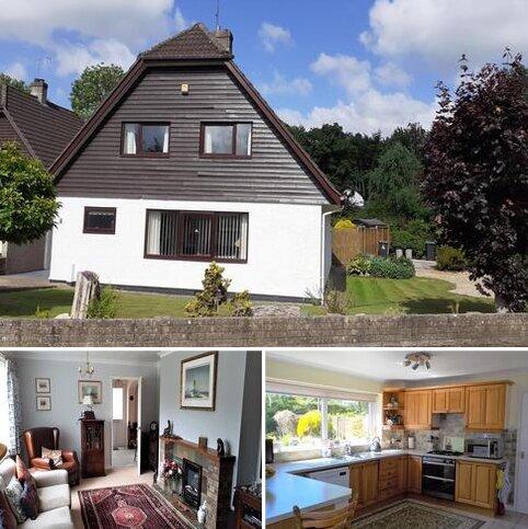 4 bedroom detached house for sale - Barton Bridge Close, Raglan NP15