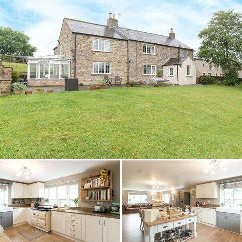 5 bedroom equestrian property for sale - West Steel, Whitfield, Hexham, NE47