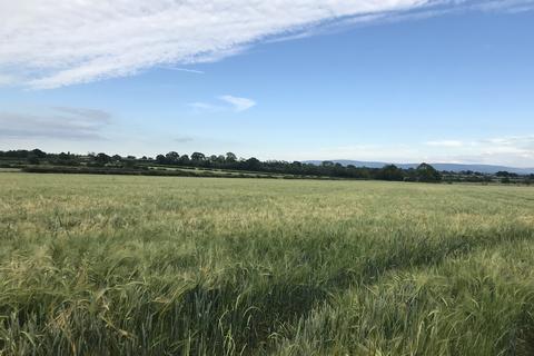 Farm land to rent - Land at Newfieldhead, Carlisle CA3 0FD