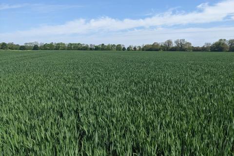 Land for sale - Westfield Lane, Hook, Goole