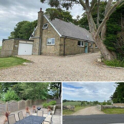 4 bedroom detached house to rent - Tranwell, Morpeth, Northumberland