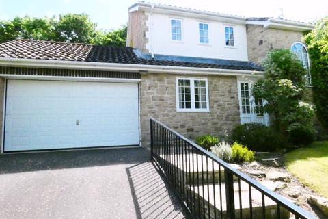 4 bedroom detached house for sale - Collingwood Drive, ,, Hexham, Northumberland, NE46 2JA