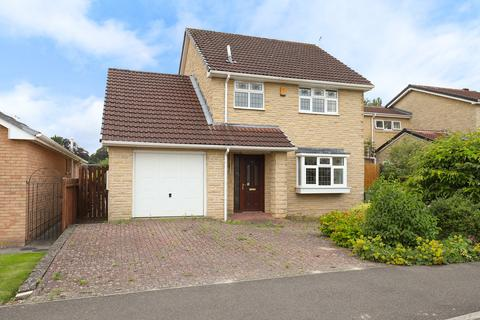 3 bedroom detached house for sale - Rhodesia Road, Brampton, Chesterfield