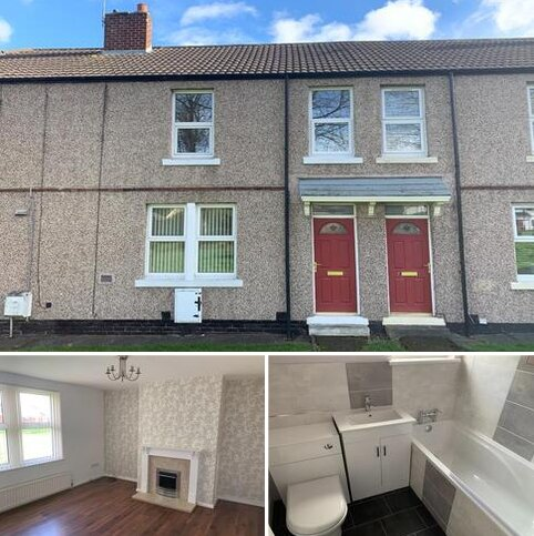 3 bedroom terraced house to rent - Oliver Street, Washington
