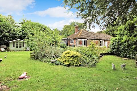 3 bedroom detached bungalow for sale - Castle Street, MEDSTEAD, Hampshire