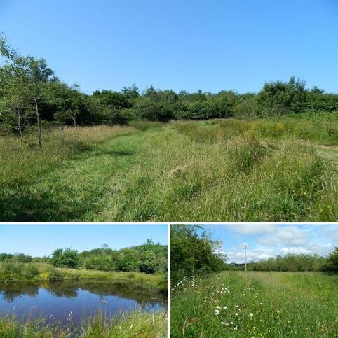 Farm land for sale - Pancrasweek, Holsworthy