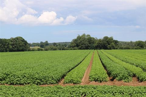 Farm for sale - South Creake, Sculthorpe, Fakenham, Norfolk, NR21