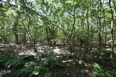 Land to rent - New Years Lane, Knockholt, Sevenoaks