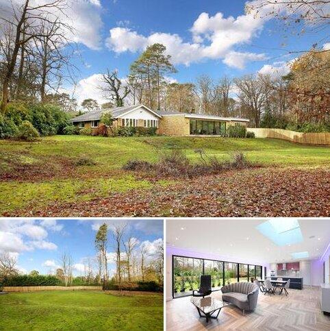 4 bedroom bungalow to rent - Shepley End, Wentworth, Berkshire, SL5