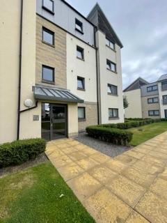 3 bedroom flat to rent - Hammerman Drive, Aberdeen, AB24