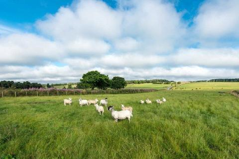 Land for sale - Lot 3 Dyke Farm, Slamannan, Falkirk, Falkirk, FK1
