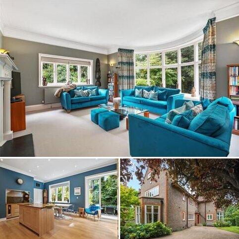 8 bedroom detached house for sale - Mount Avenue, London, W5